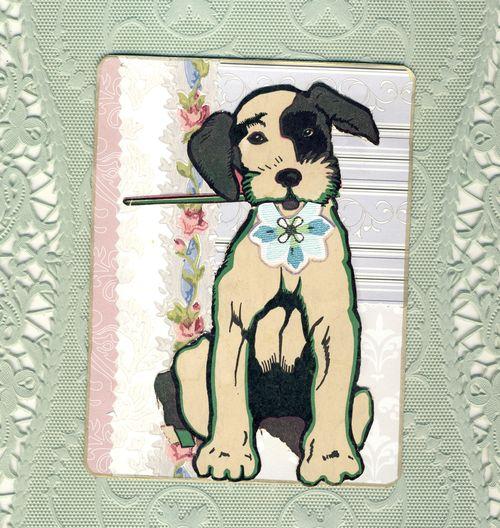 Puppy tag
