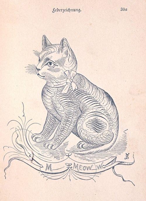 Spenserian cat