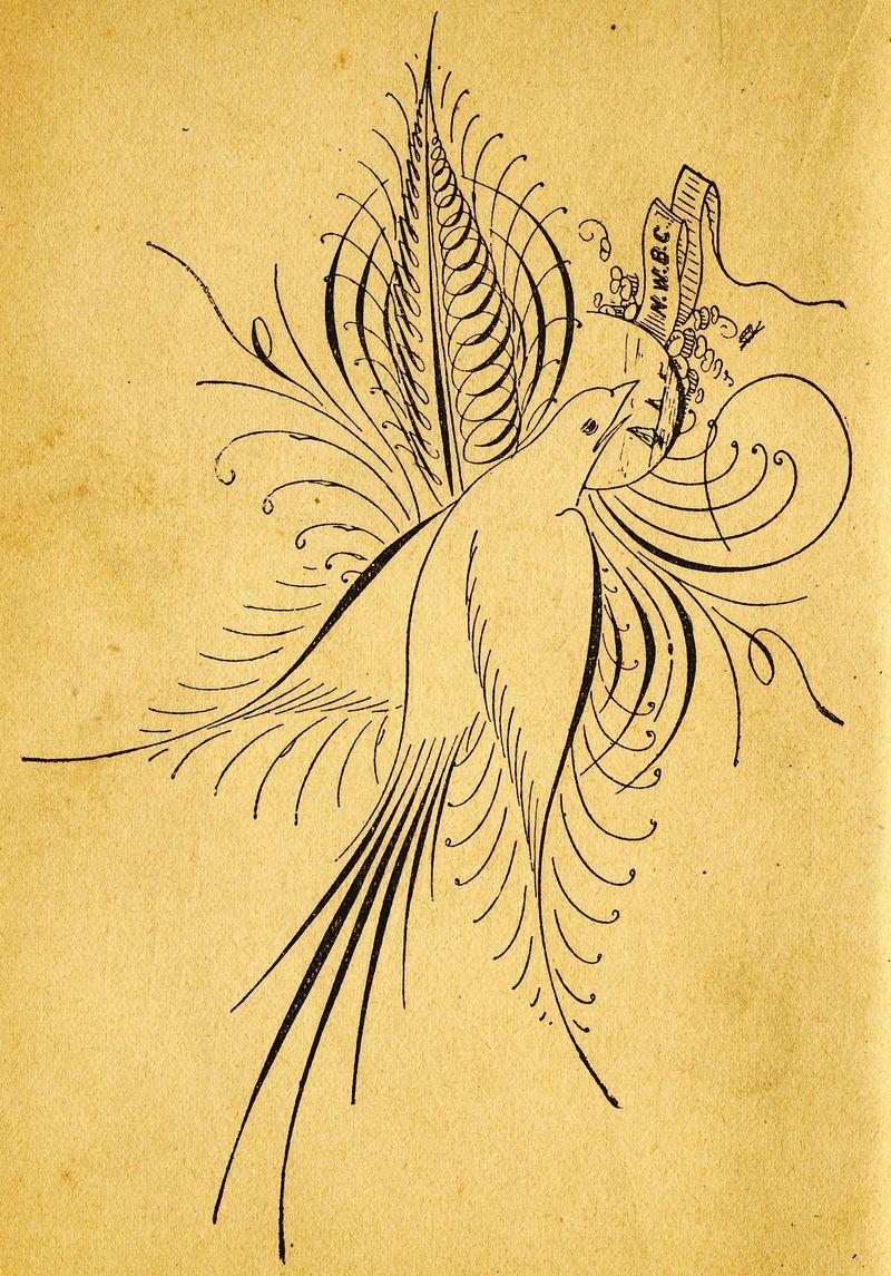Image4