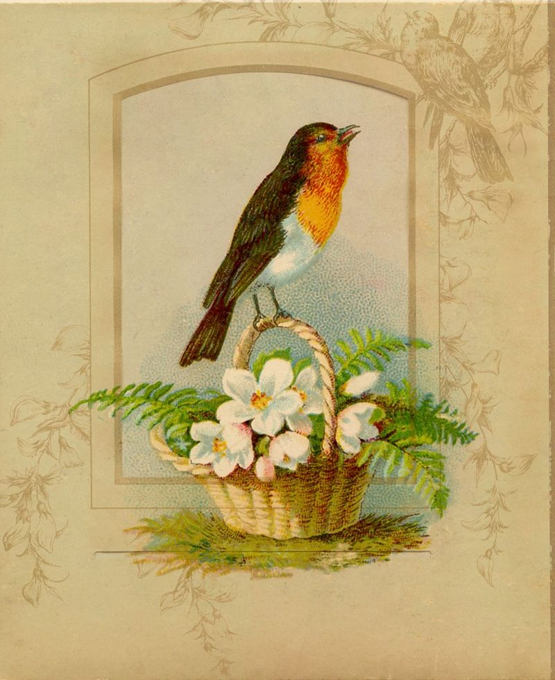 Robin-Vintage-Image-Graphics-Fairy5 collage