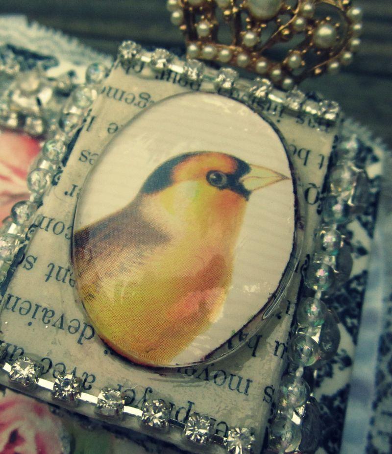 Bird bezel