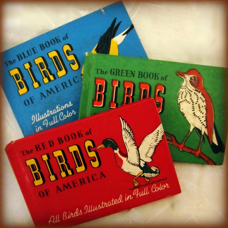 Bird books