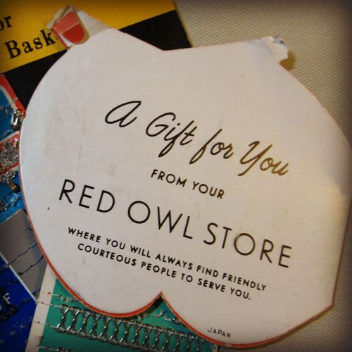 Red owl back