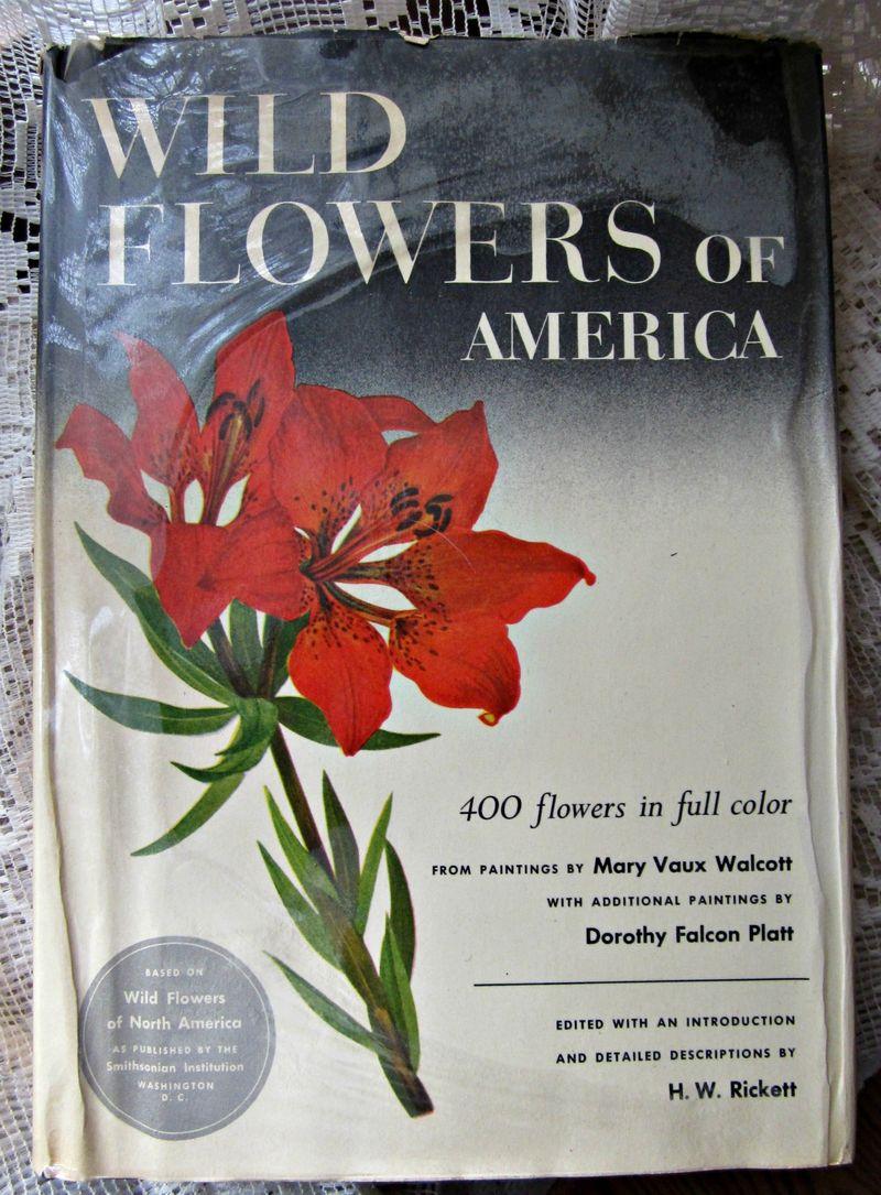 Wild flower book