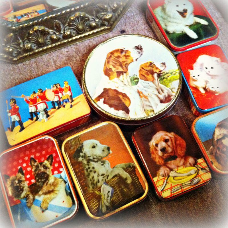 Dog tins
