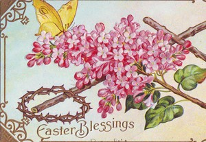 Easter_butterfly_1
