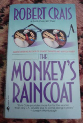 Monkey_raincoat
