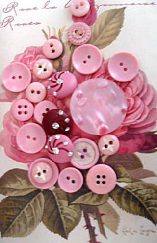 Pink_buttons_on_rose_card